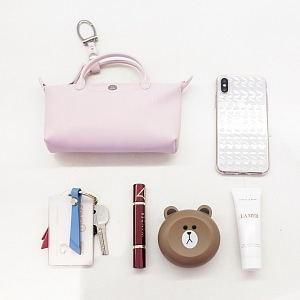 Longchamp and Mr. Bags