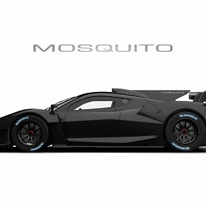 Mosquito in black